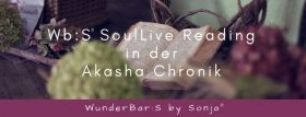 Wb:S® SoulLive Reading Akasha Chronik